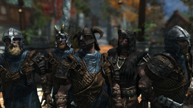 Varied Guards and Stormcloaks A