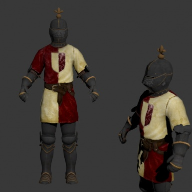 Imperial knightly Heraldic Armour 2
