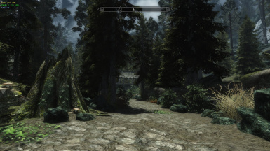Entering Riverwood