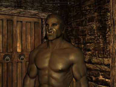 My Orc Warrior
