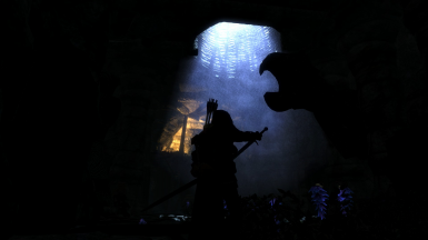 The Calm of the Dragonborn