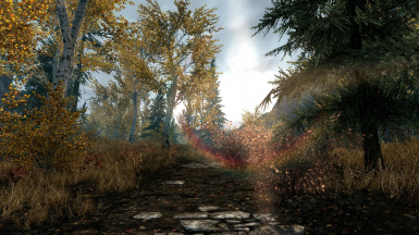 Sunflare Road