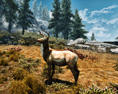Animallica Preview - Spotted Deer