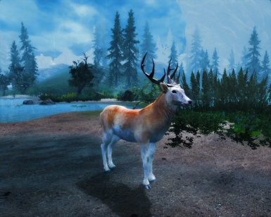 Animallica Preview -  Red Deer