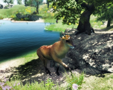 Animallica Preview - Marsh Deer