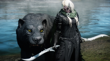 Drizzt with Guenhwyvar