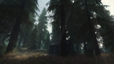 Forest Simulator 2013