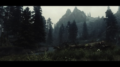 Unreal Cinema ENB - forest landscape