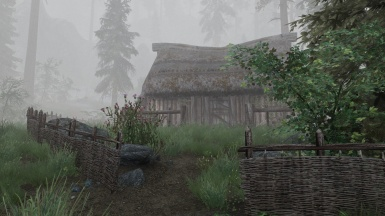 NLA 2 ENB - Riverwood in the fog