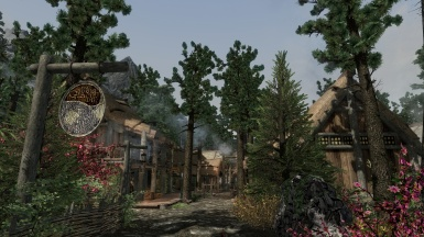 Riverwood During The Day