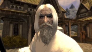 Saruman in Rob with his Staff WIP-MOD 2