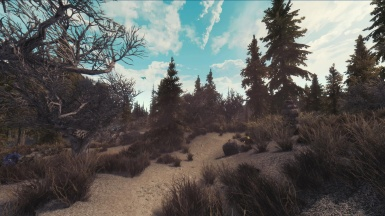 Landscape by Cinemagic Enb