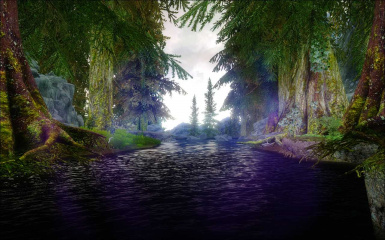 some LENS  FLARE and HEAVY M0ded skyrim FORESTs