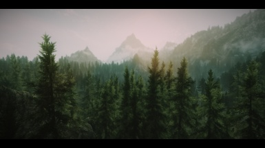 Forests of Skyrim and Other Shots