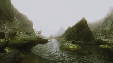 A River and Beyond