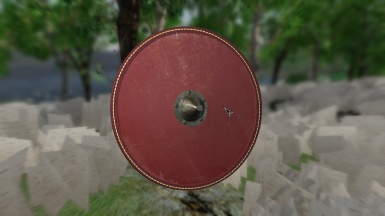 Merovingian Shield