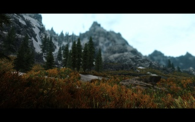 Random with Far Off ENB - The Pacific Northwest