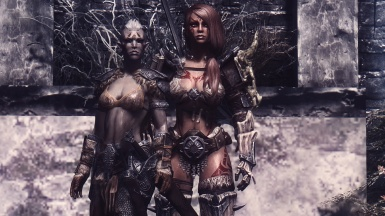 The Nord and The Dunmer