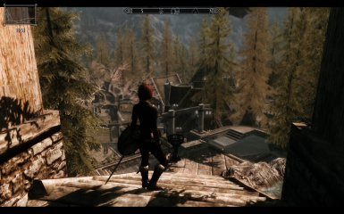 Cattibrie 40 to 50 FPS on low End PC