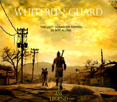 The last guard on Tamriel is not alone