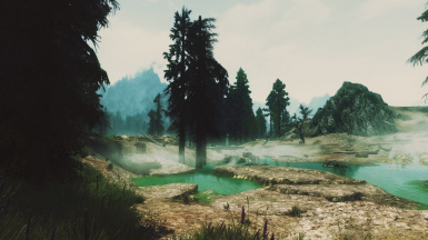 Boiling swamps