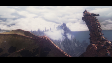 a dragon heading to solitude