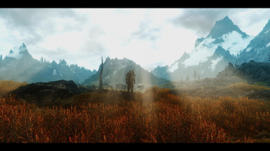 SYNERGY ASCENSION ENB