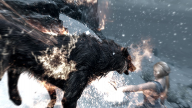 When wolves attack 01