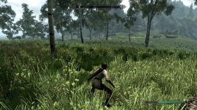 Hunting in the fields