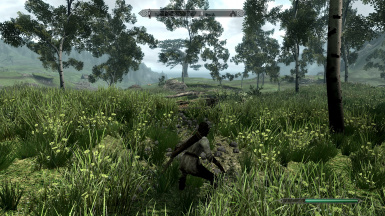 Hunting in the fields 2