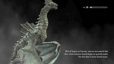 A Public Service Announcement brought to you by the Dragons of Skyrim 01