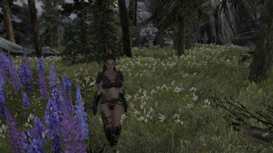 Warm Summers Day in Tamriel