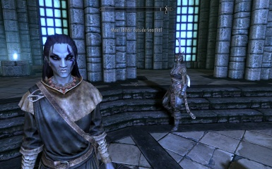 Dunmer with Orsimer eyes