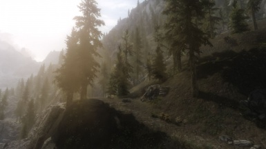 Ruvaak Dahmaan ENB Mountain Mist Test
