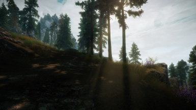 Tranquillity ENB