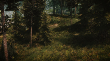 Exhilarating Forest with Kinematic Enb