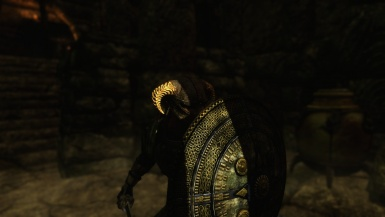 Warrior In The Shadows