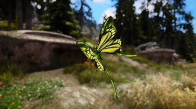 Fauna And Flora In Skyrim