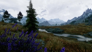 Cloudy day in Whiterun