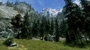 mountains to meadow