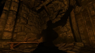 Random Screenshot - Shadow Warrior