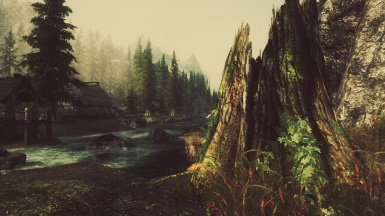 Near Riverwood 2