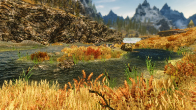 E ENB and PW