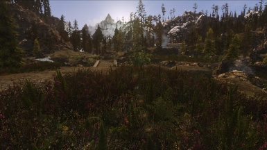 Realvision ENB with Natural Lighting and Atmospherics for ENB