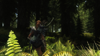 Hunting in the Forest