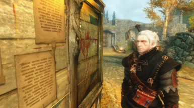 a witcher in skyrim