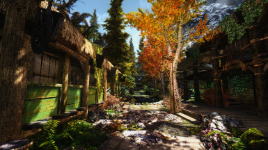Riverwood Reborn GOLD with ENB