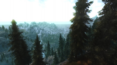 Nice morning on the mountain