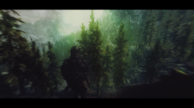 Deep into the forest