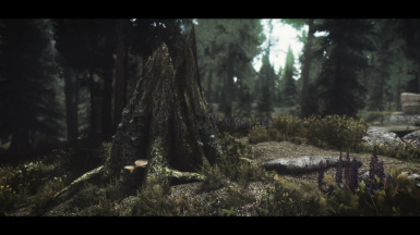 Poupouri - The Pines of Falkreath Hold